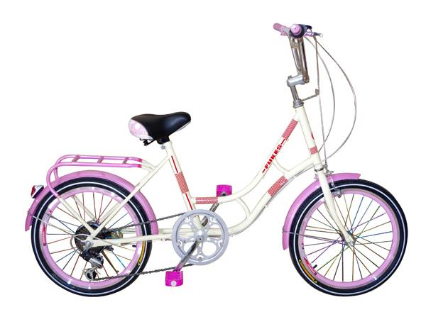 26-inch Lady's City Bike with Double Stand, Plastic Basket, Rear Light/Lamp, Full Chain Cover