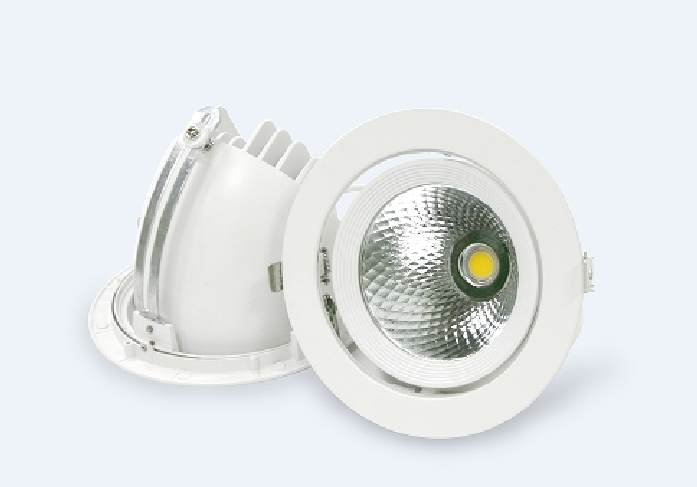 Gimbal COB LED Down Light (Core Gimbal)
