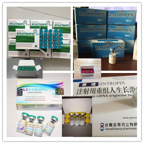 Injectable Human Growth Hormone HGH Jintropin For Anti Aging / Muscle Growth