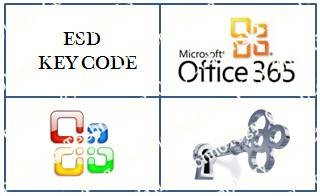 WHOLESALE Office 365 key code , 100% activated online, hot selling