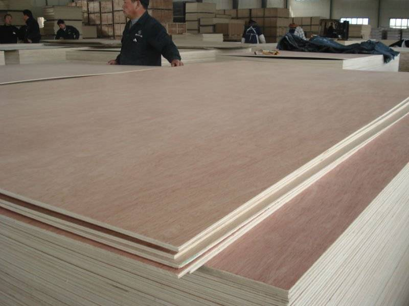 Packing plywood/ Construction plywood T009