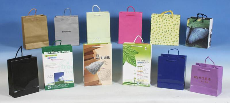 Colorful Printed Standard Size Shopping paper Bag
