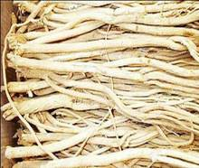 Astragalus Extract 0.3%~0.5% Astragalosides