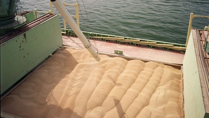 Milling Wheat protein 12.5