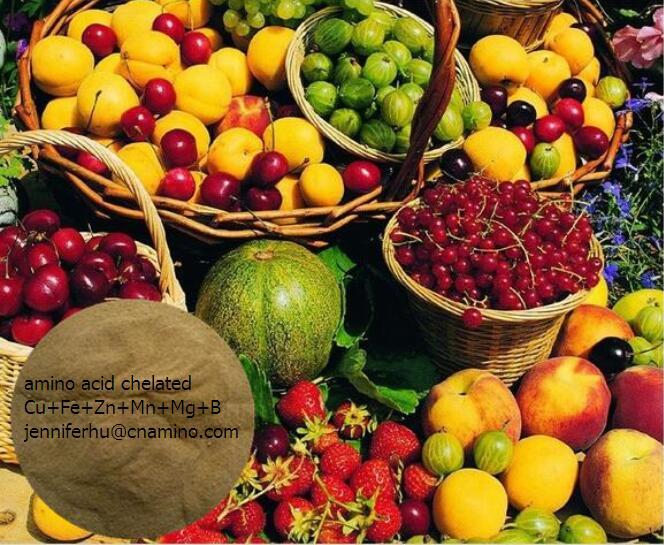 Amino Acid Chelated Trace Elements for Organic Fertilizer