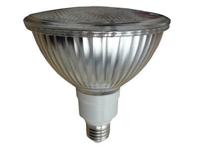 12W PAR38 LED Light