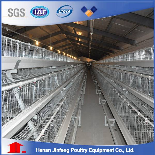 Popular A frame layer chicken battery cage