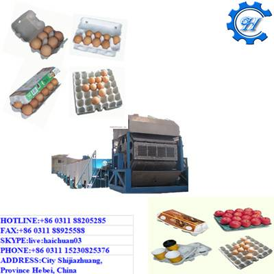 New-type Large Automatic Paper Egg Tray  Machine