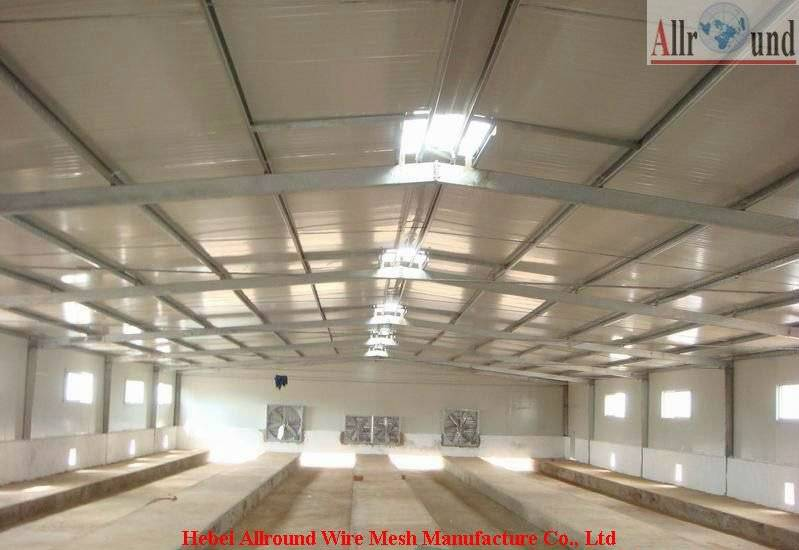 Prefabricated steel structure building for poultry rearing