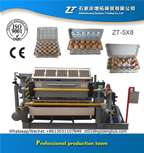 Paper Pulp Moulding Machine
