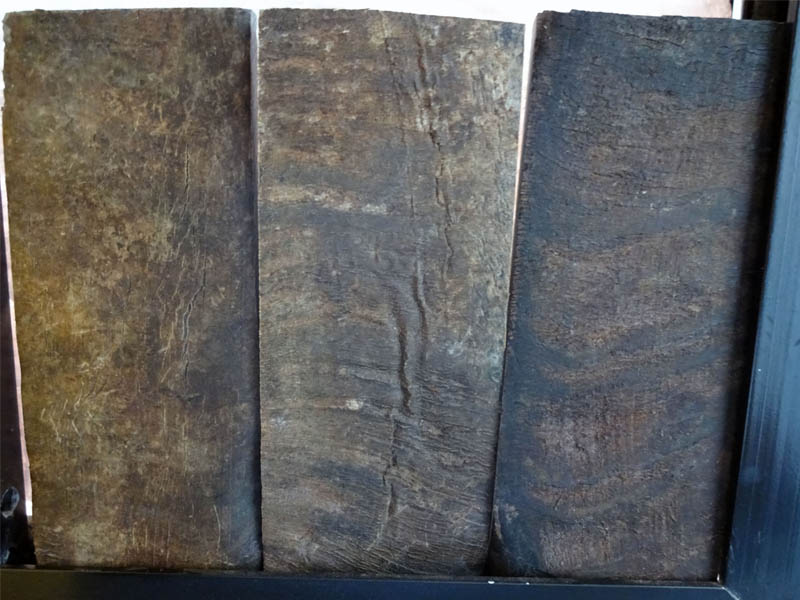 Horn Plates Natural Skin