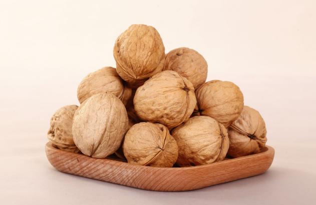 China walnut in shell