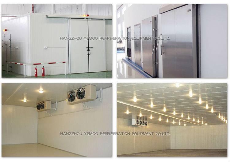 zhejiang hangzhou Yemoo ice cream freezer room cold storage with sliding door or hinge door