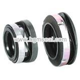 CH Mechanical seal