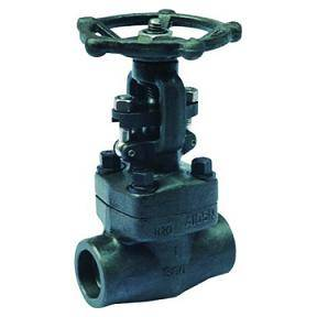 Gate Valve Forged