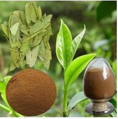 Senna Leaf Extract Sennoside