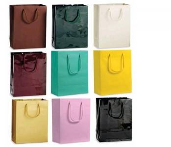 Paper Shopping Bag with Handle/Cheapest Price