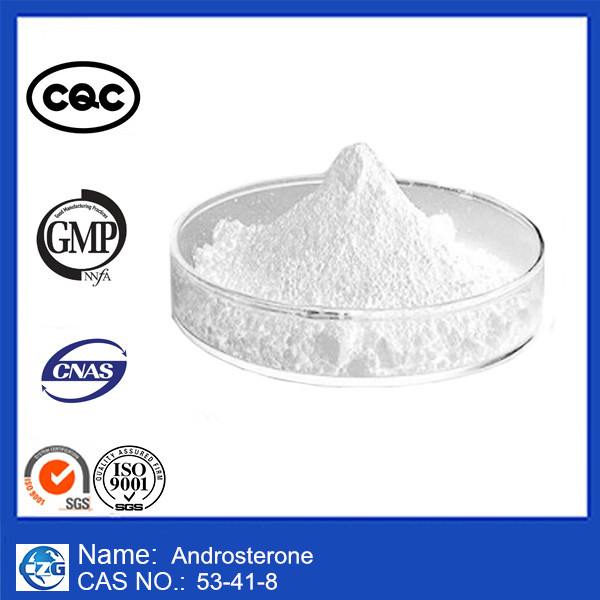 99% Purity High quality Male Hormone Powder Androsterone
