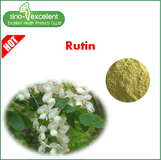 Hot sell Top quality 70-101% Sophore japonica extract Rutin