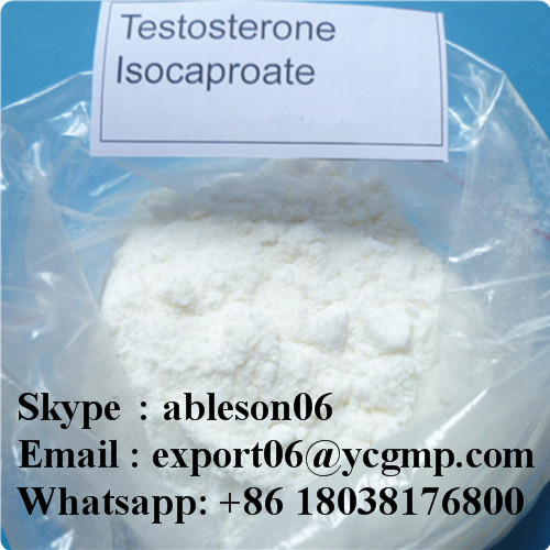 Steroids Powder Testosterone Isocaproate Test Isocaproate Test Iso