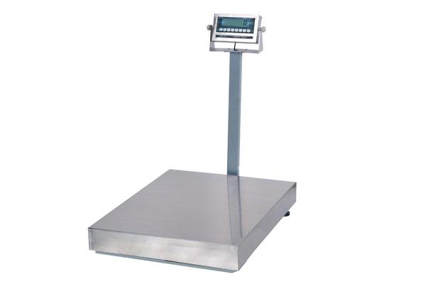 Movable 150kg TCS Platform Scale