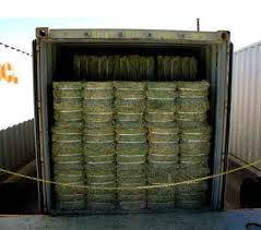 Top Quality Timothy Hay , Alfafa Hay Available For Nourishing Animals