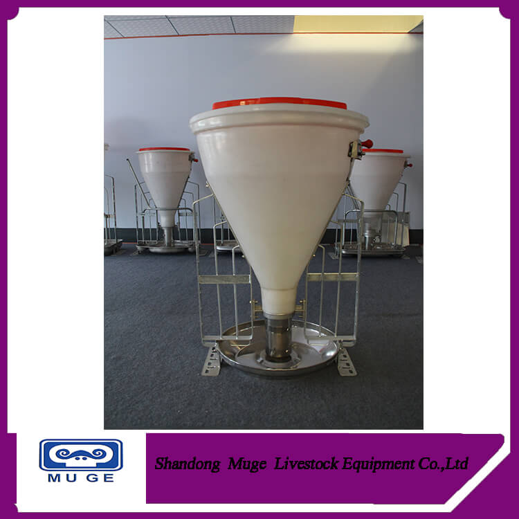Pig automatic dry and wet feeder