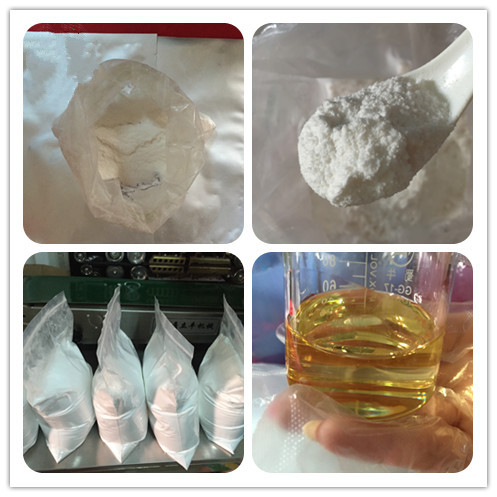 Testosterone Cypionate  Sustanon 250 Boldenone Acetate 99% Purity Powder Factory