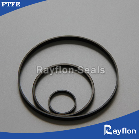 PTFE Guide Rings
