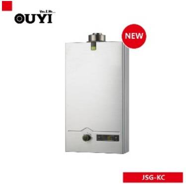 High Quality Stainless Steel Flue Type Gas Water Heater with LED