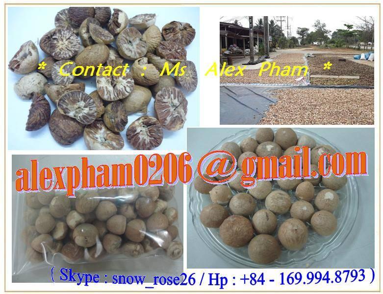 BETEL NUT/ SUPARI/ ARECA NUT/ WHOLE BETEL NUT/ SPLIT BETEL NUT/ BETEL NUT SLICES/ ARECA CATECHU