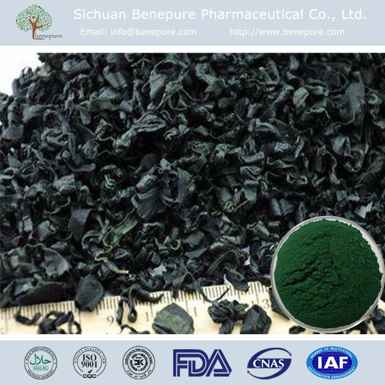 Organic extract 50% Protein SPIRULINA EXTRACT for digestive health,BENEPURE