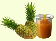 Sulphited Pineapple Pulp