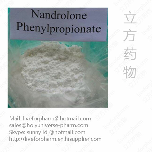 99% Quality Nandrolone Phenylpropionate/Raw Materials Powder/CAS434-22-0