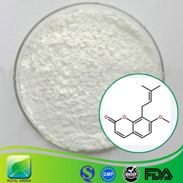 Pharmaceutical Grade Herbal Sex supplement enhancement Cnidium Fruit Extract Powder