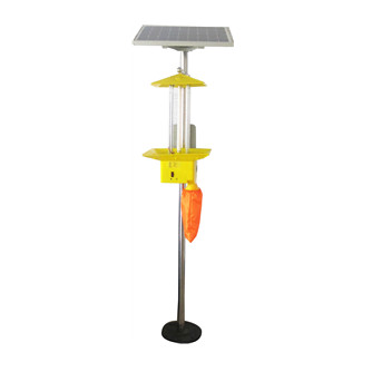 QT-SC02 Frequency vibration solar insecticidal lamp
