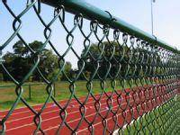 PVC Coated Paint Chain Link Fence (Supplier)