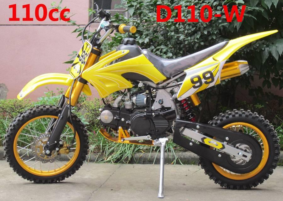 110cc dirt bike:  D110-W