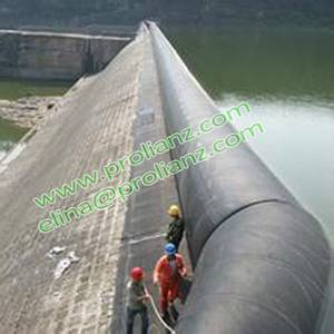 Professional Pneumatic Rubber Dam with Various Size