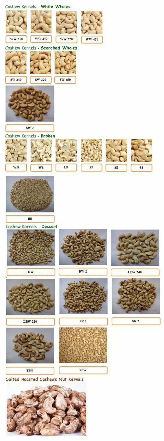 Cashew Nuts/Cashew Kernels