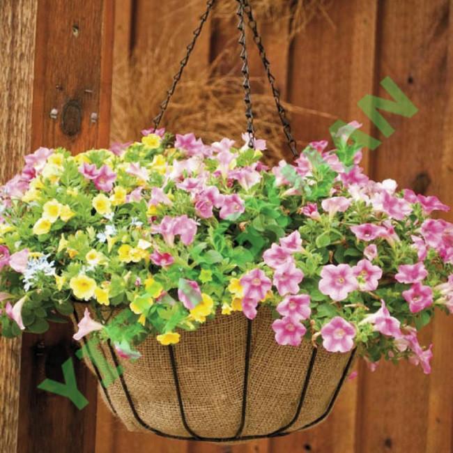 gardenhanging basket