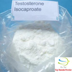 High quality Testosterone Isocaproate raw steroids powder