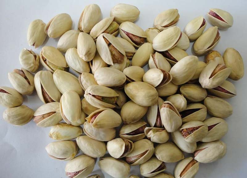 Pistachio with and without Shell , Pistachios Roasted and Salted Bulk , Cheap Price Pistachio Nuts,