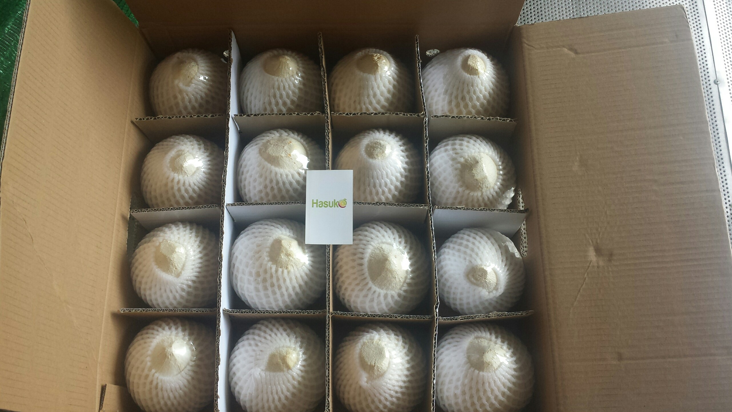 Fresh diamond/ polish coconut (84)1669868008