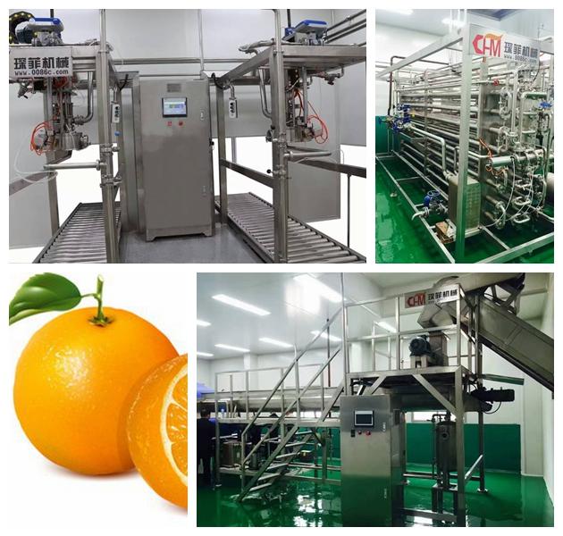 Orange, Lemon, Citrus, Pomelo, Grapefruit processing line machine