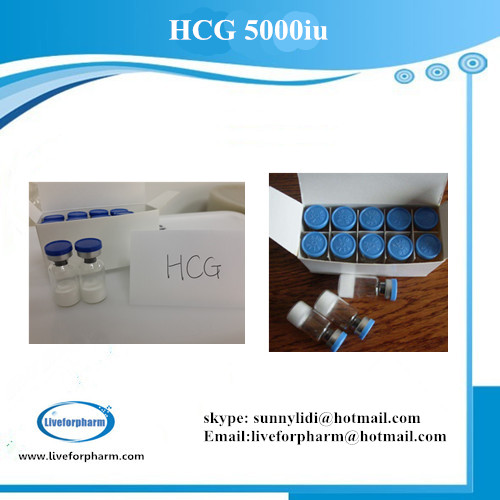 PEPTIDE HCG Human Growth Hormone 5000iu/vial 98.8% above purity