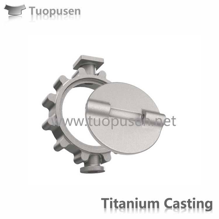 Titanium Investment Castings Titanium Valves and Pumps