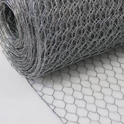 Free sample factory perfect price galvanized Hexagonal wire mesh /Chicken coop wire netting