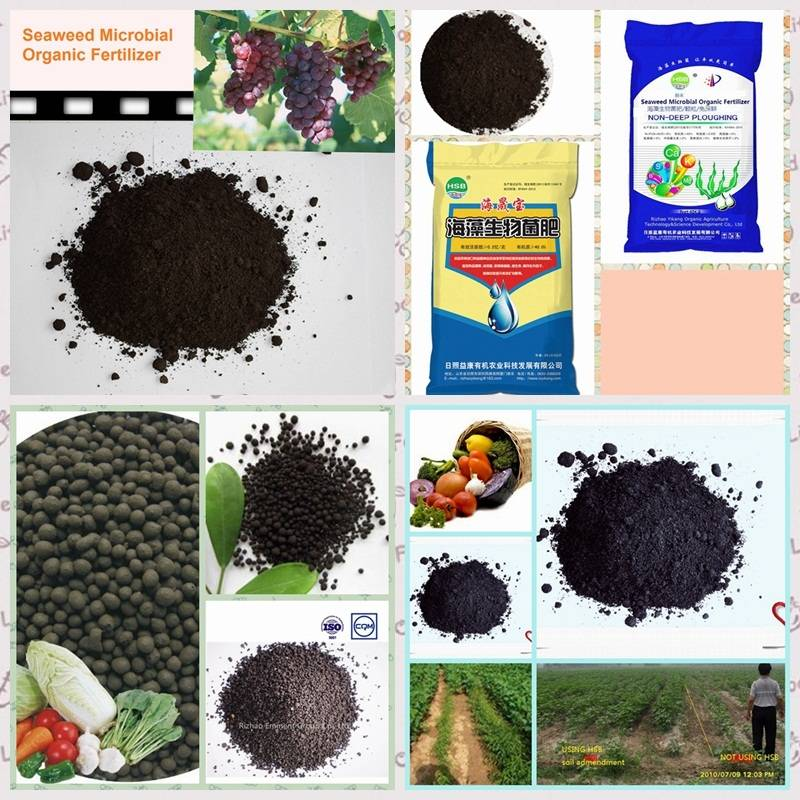 Seaweed Microbial organic fertilizer  bio fertilizer with plant growth promoter