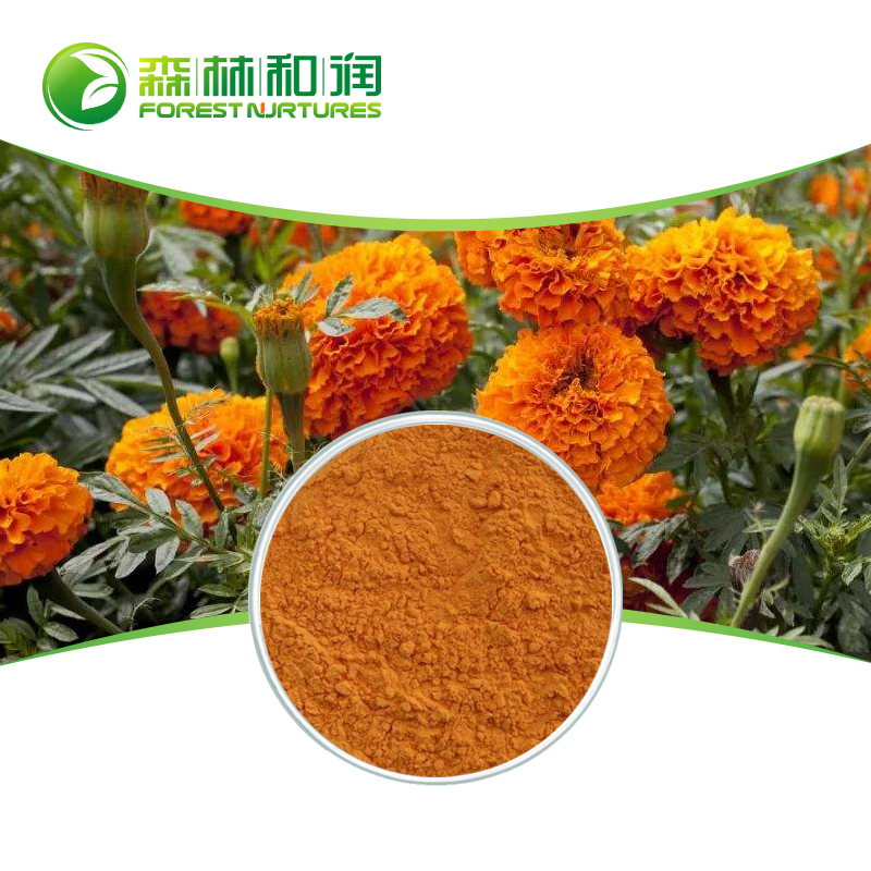 Best marigold flower powder extract xanthophyll lutein water soluble